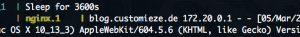 Screenshot mit interner IPv4-Adresse im Log des Reverse Proxy